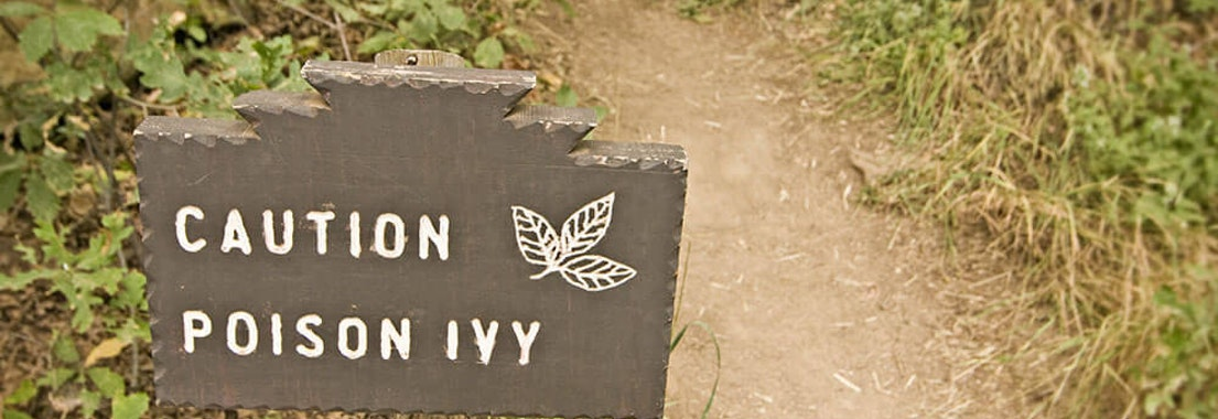 """Sign saying """"caution poison ivy"""" 4 Things to Do After Contacting Poison Oak or Poison Ivy"""